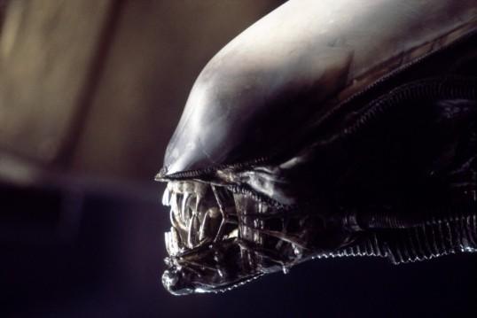 Alien Xenomorph Creature